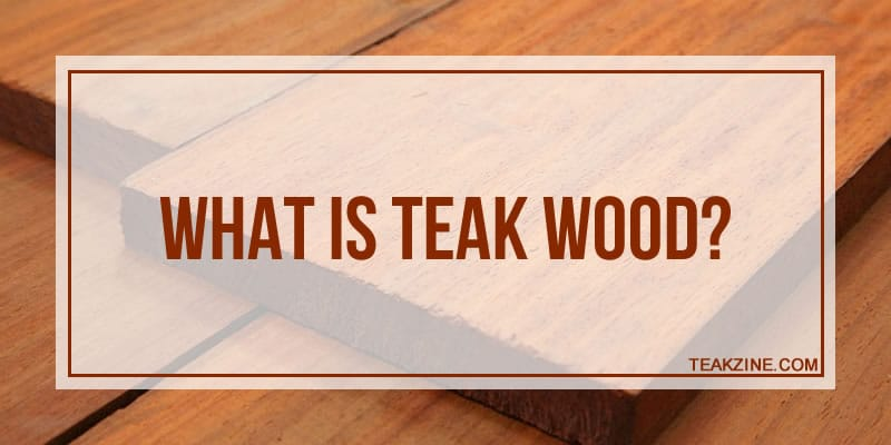 What is teak wood?